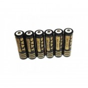 Microbattery (10)
